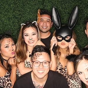 Birthday: V3P Wild Cats!