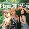 Anniversary: Playa Mesa's 1 Year