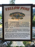 Walking Tour of Yellow Pine