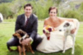 Bride and Groom with bouquet and dogs