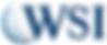 WSI Logo.png