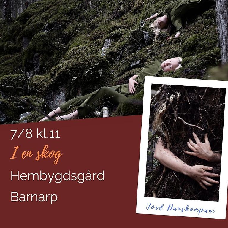 I en skog - Sommarkul Barnarp