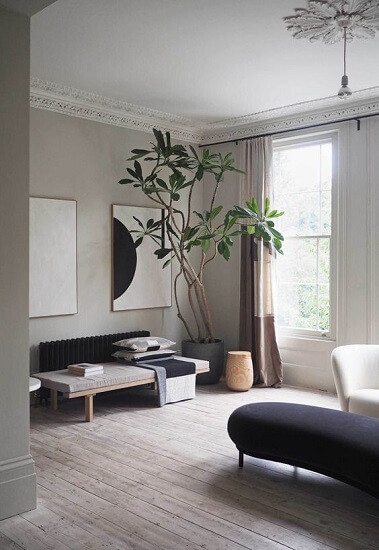 Japandi living room with light oak floors, blue curved bench seat, straight, two toned bench seat with throw blankets, cushions and books. White curved chair. Large potted frangipani. High ceilings.