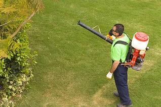 franklin-pest-control-spraying-for-mosqu