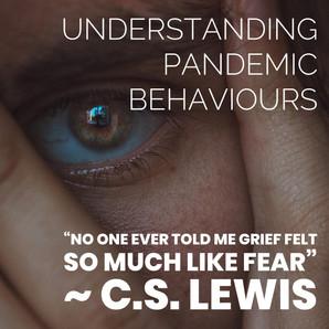 Understanding Pandemic Behaviours