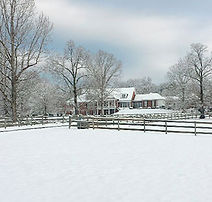 Barking Fox Farm on a Winter Day