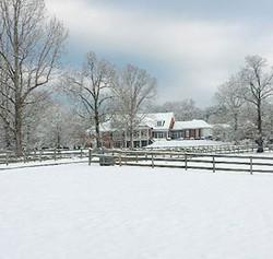 Barking Fox Farm Guesthouse