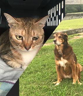 Tabitha & Tia