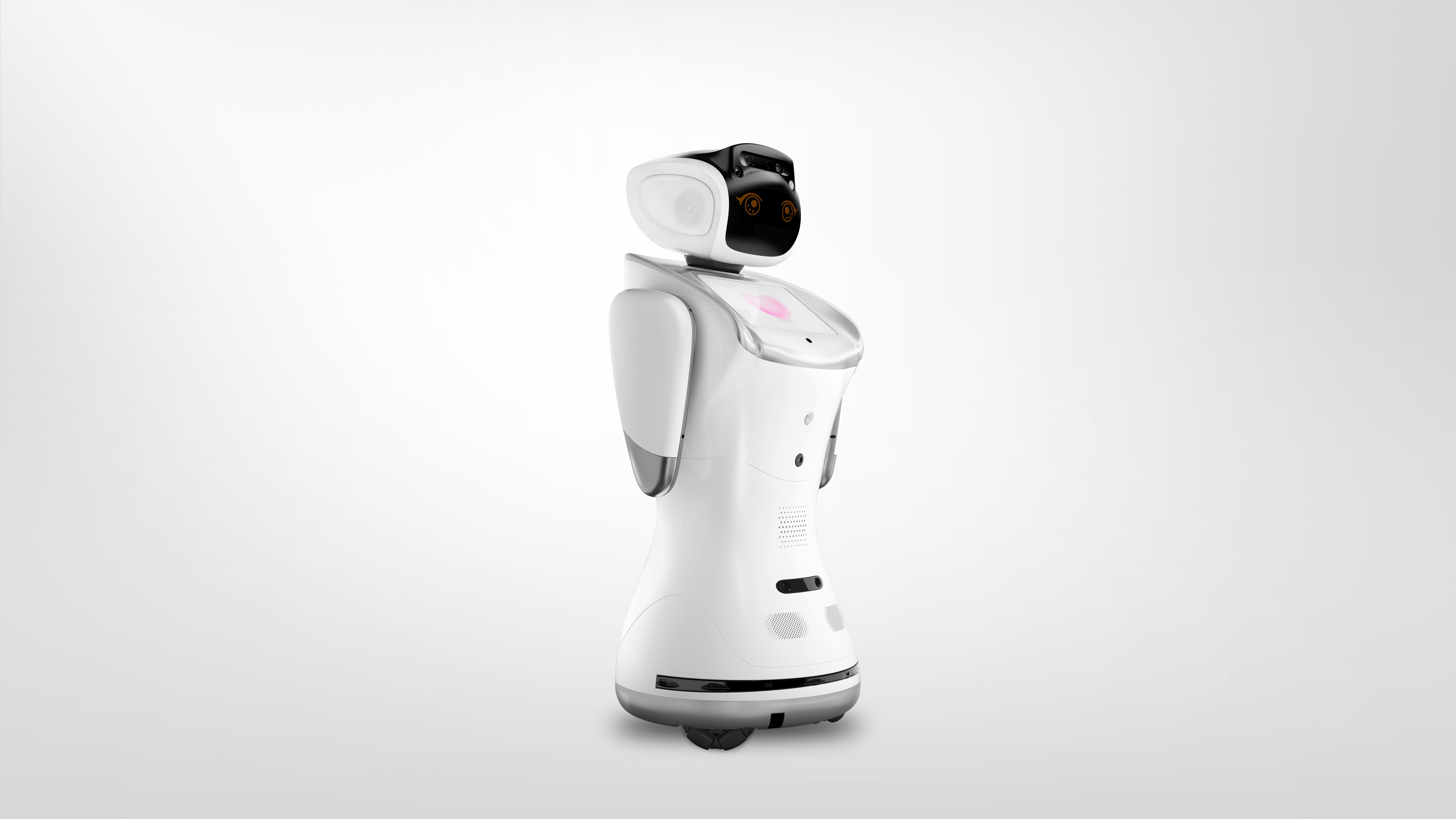 Sanbot picture