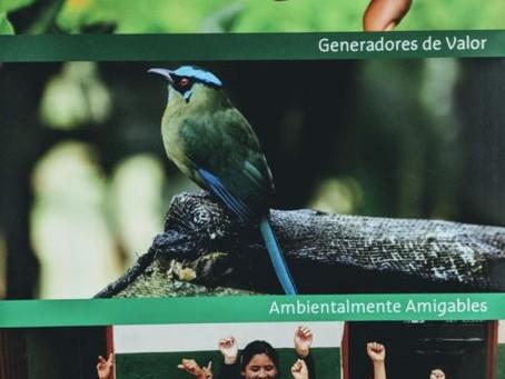 Agrícola Himalaya : l'excellence du thé de Colombie