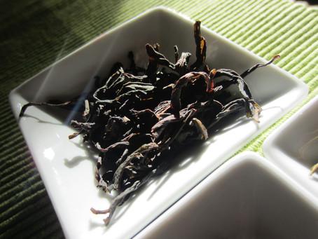 Tea tasting : Oolong de Chaozhou (Guangdong)