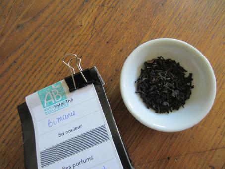 Colombie et Birmanie: thés noirs de caractère