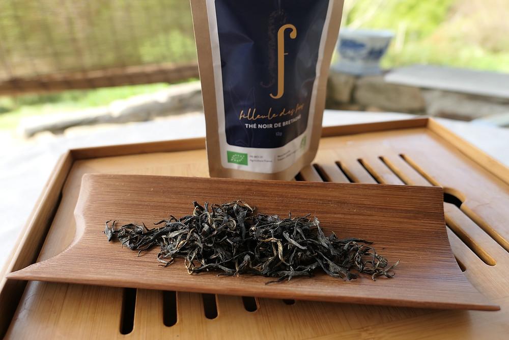 Superbes feuilles de thé breton par Filleule des Fées (crédit photo Filleule des Fées).