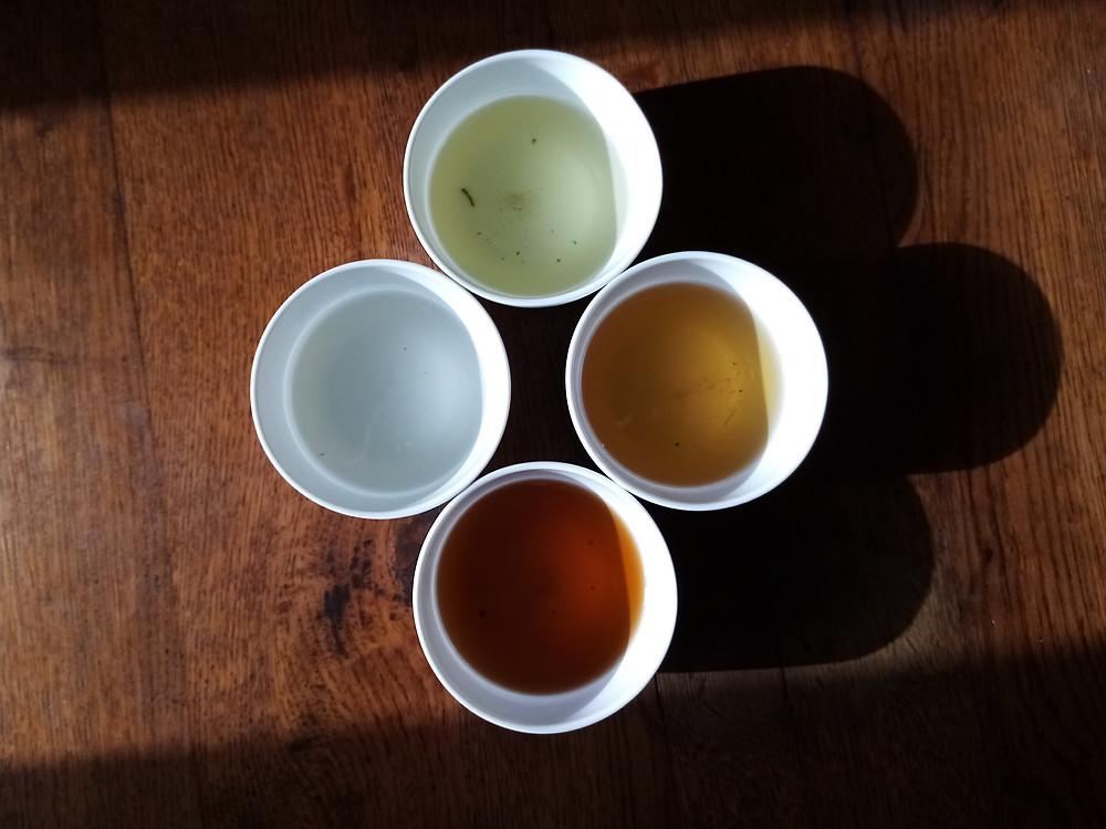 Quatre tasses contenant quatre couleurs de thé différentes. Thés d'origine vietnamienne.