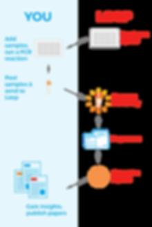 Workflow-v2-01.png