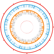 Microbial-whole-genome-icon-ai.png