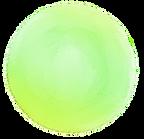 緑丸.png