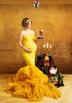 disn'art_photographe_grossesse_maternite