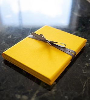 yellow folio 2.jpg