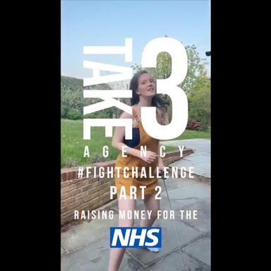 Take 3 - Fight Challenge