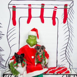 2nd Family Grinch-3-(ZF-6455-64519-1-004