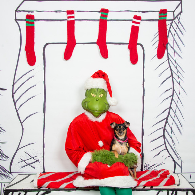 2nd Family Grinch-1-(ZF-6455-64519-1-001