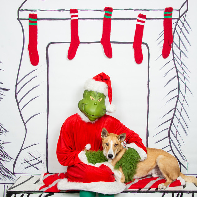 2nd Family Grinch-4-(ZF-6455-64519-1-005