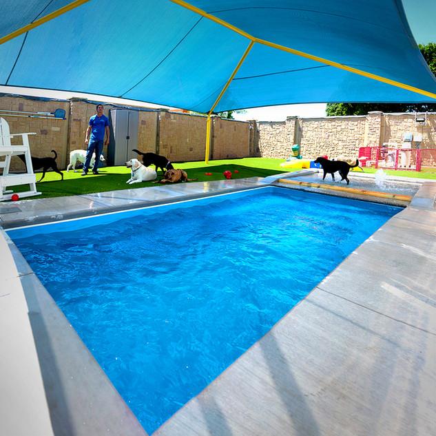 Pool Panoramic_Social.jpg