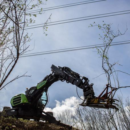 Forstarbeiten im steilen Gelände
