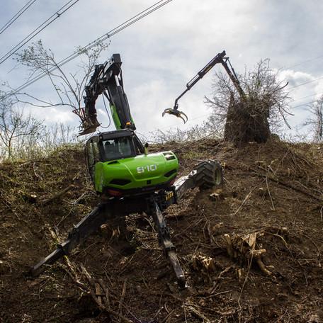 Forstarbeiten und Freischneiden von Stromleitung