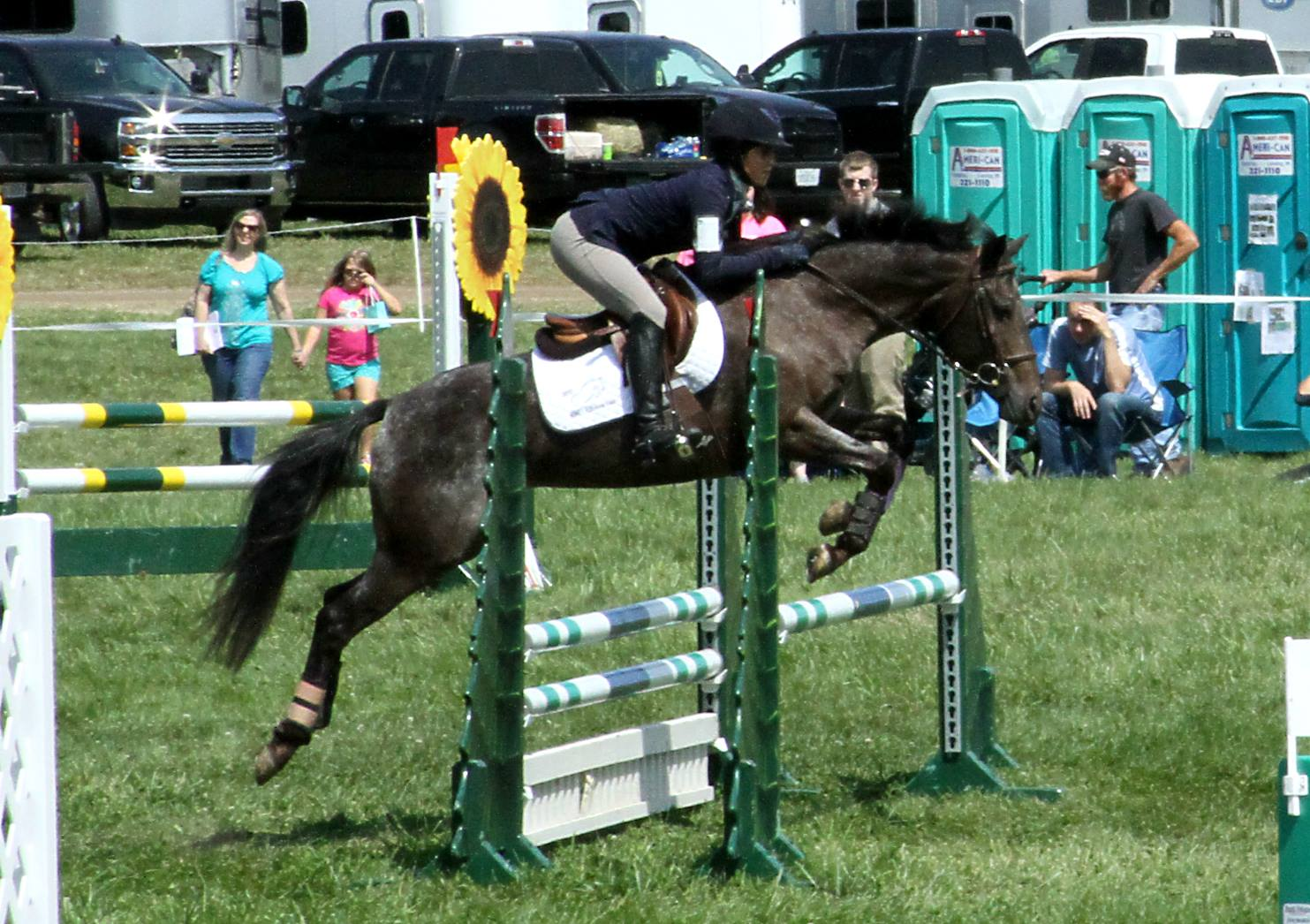 Miss B at Richland Park HT 2017