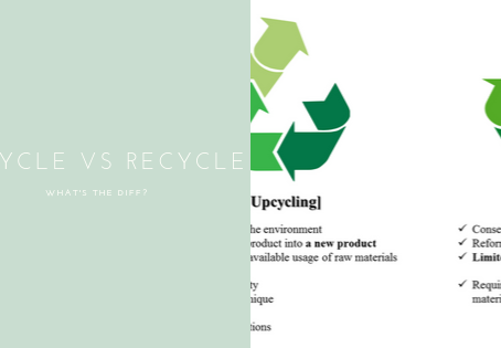 Upcycle VS Recycle: What's the diff?