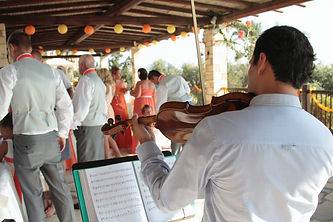 Live Violinist for your Cyprus Wedding, to walk down the aisle