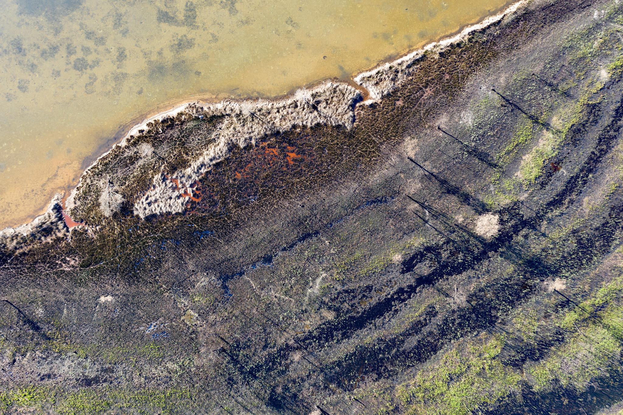 bushfire shore.jpg