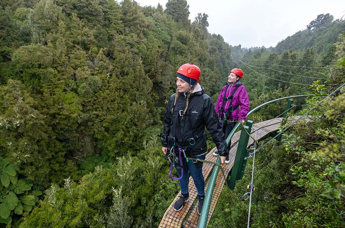 Ultimate-canopy-tour-elevated-walkway-mi