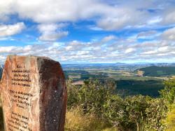 遠くにトンガリロの山々