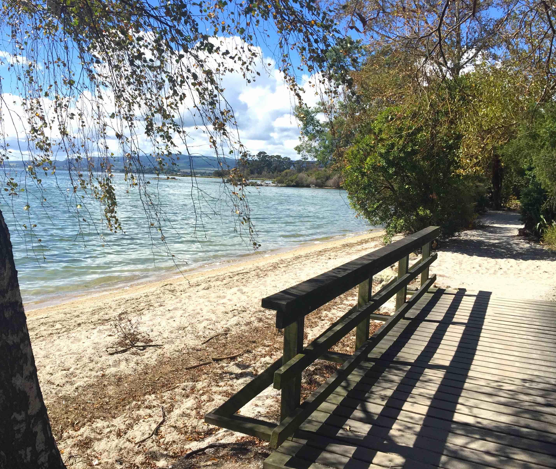 湖沿いの散歩コース