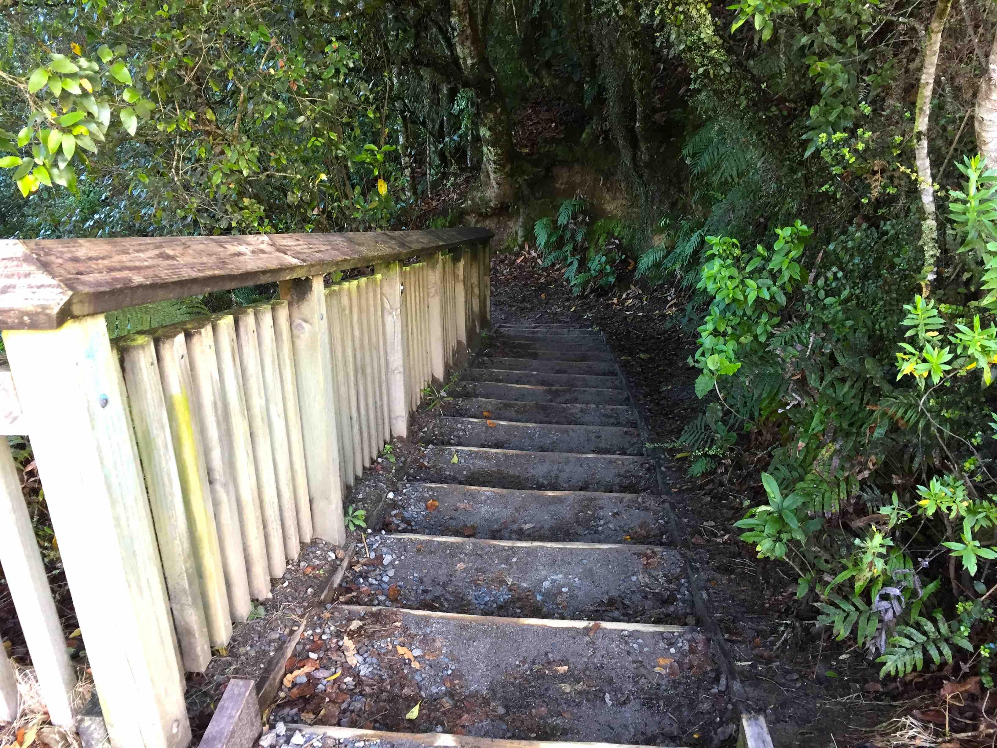 ビュースポットへ向かう階段