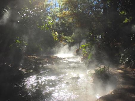 森の中にあるロトルアならではの天然温泉『ケロセンクリーク』