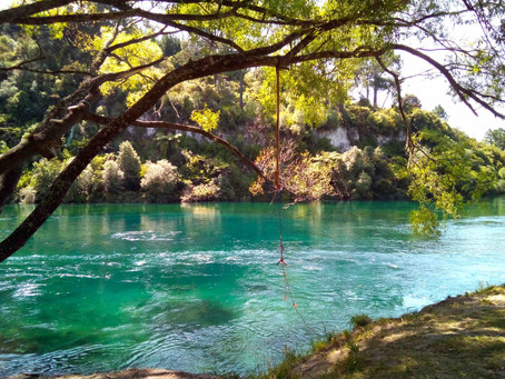 エメラルドグリーンに輝くワイカト川沿いにある『ヒパパトゥアリザーブ』