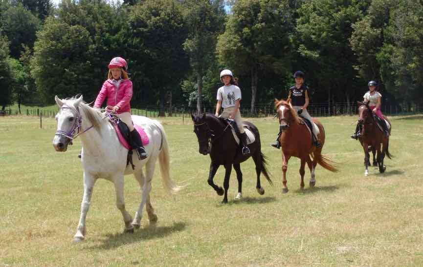 horsetrecking9