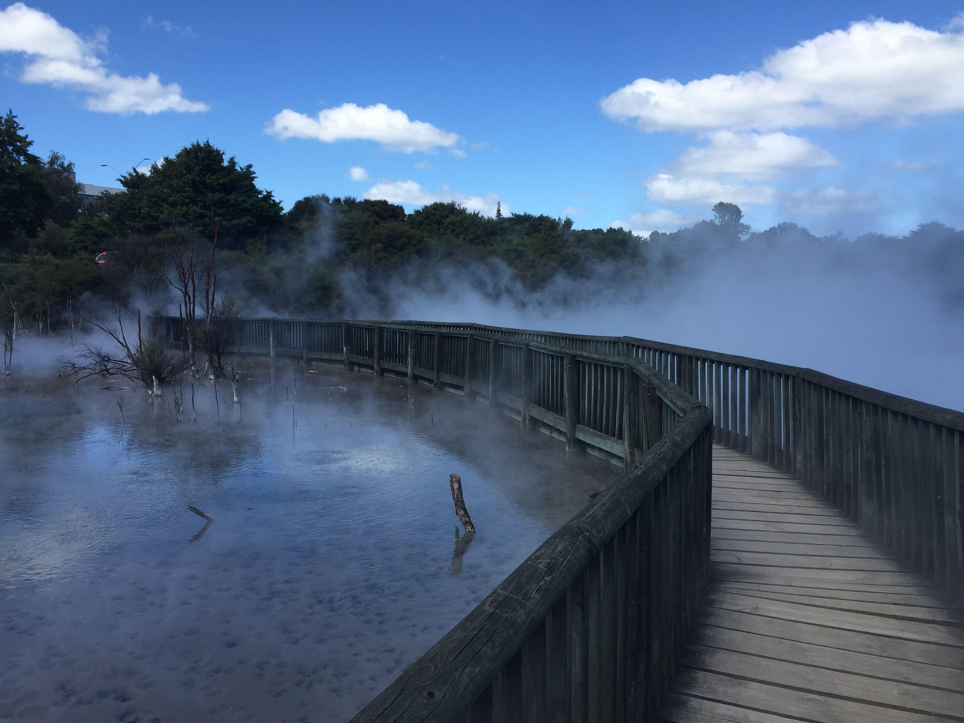クイラウ公園 地熱池
