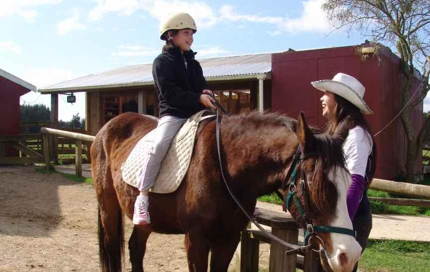 horsetrecking5