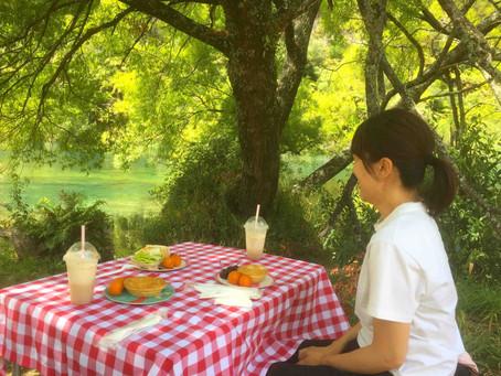 美しいワイカト川のほとりでピクニックランチ!