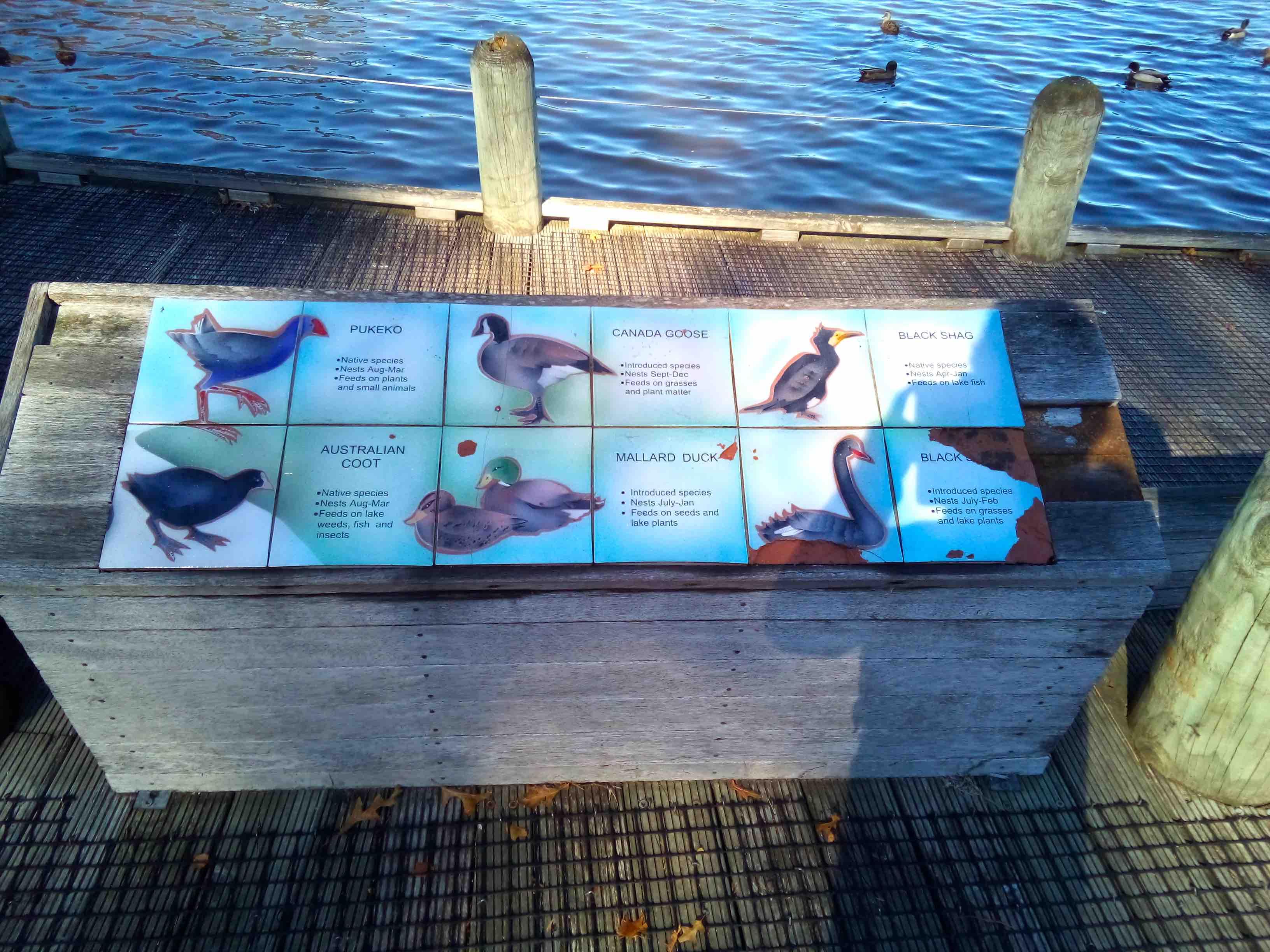水鳥の案内板