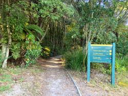 山への入口