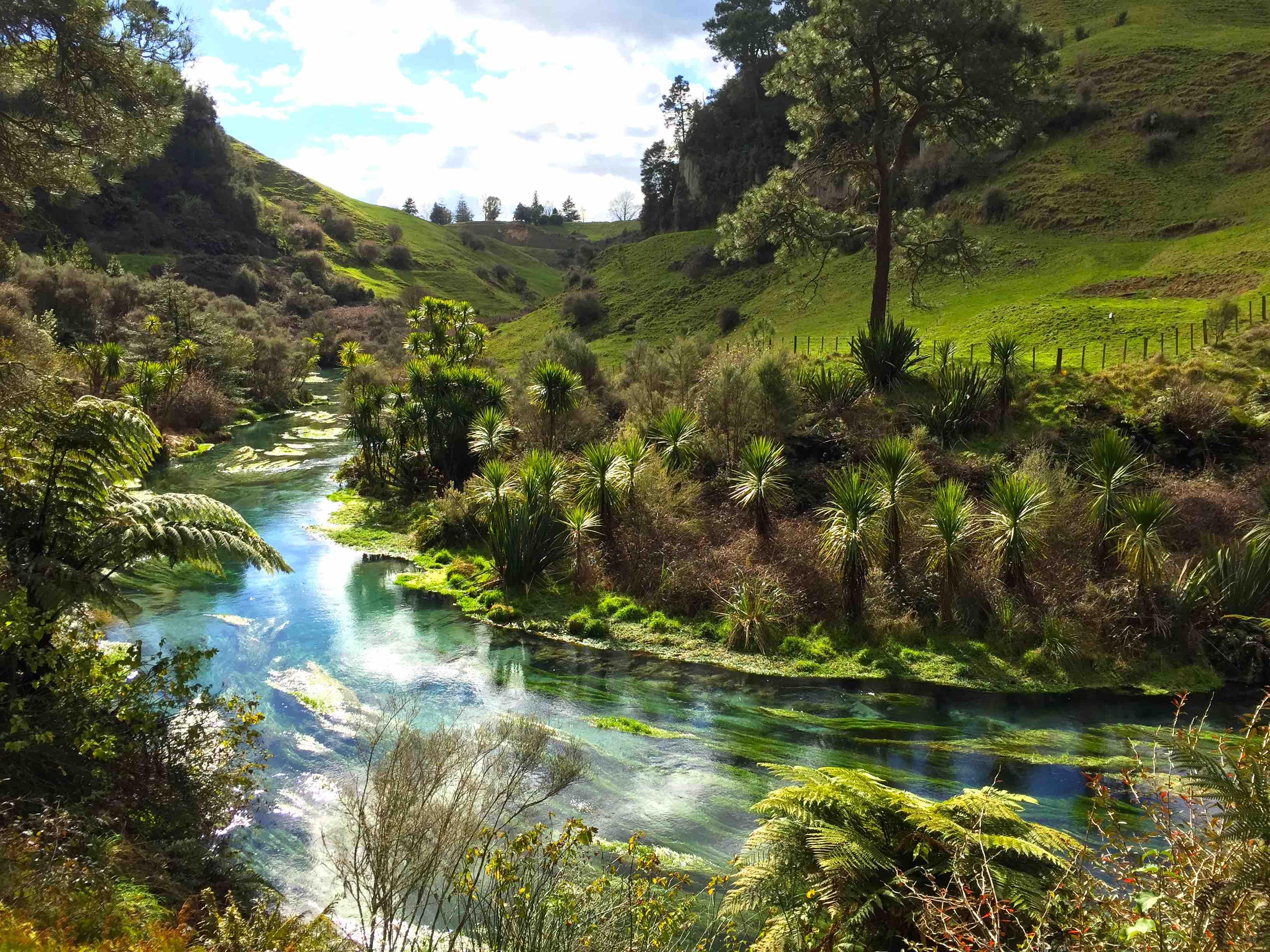 水草が美しく映える川