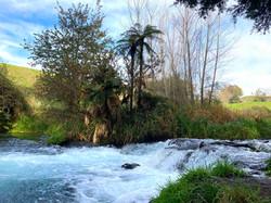 コース途中の小さな滝