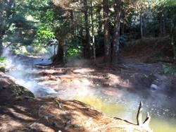 天然温泉の小川