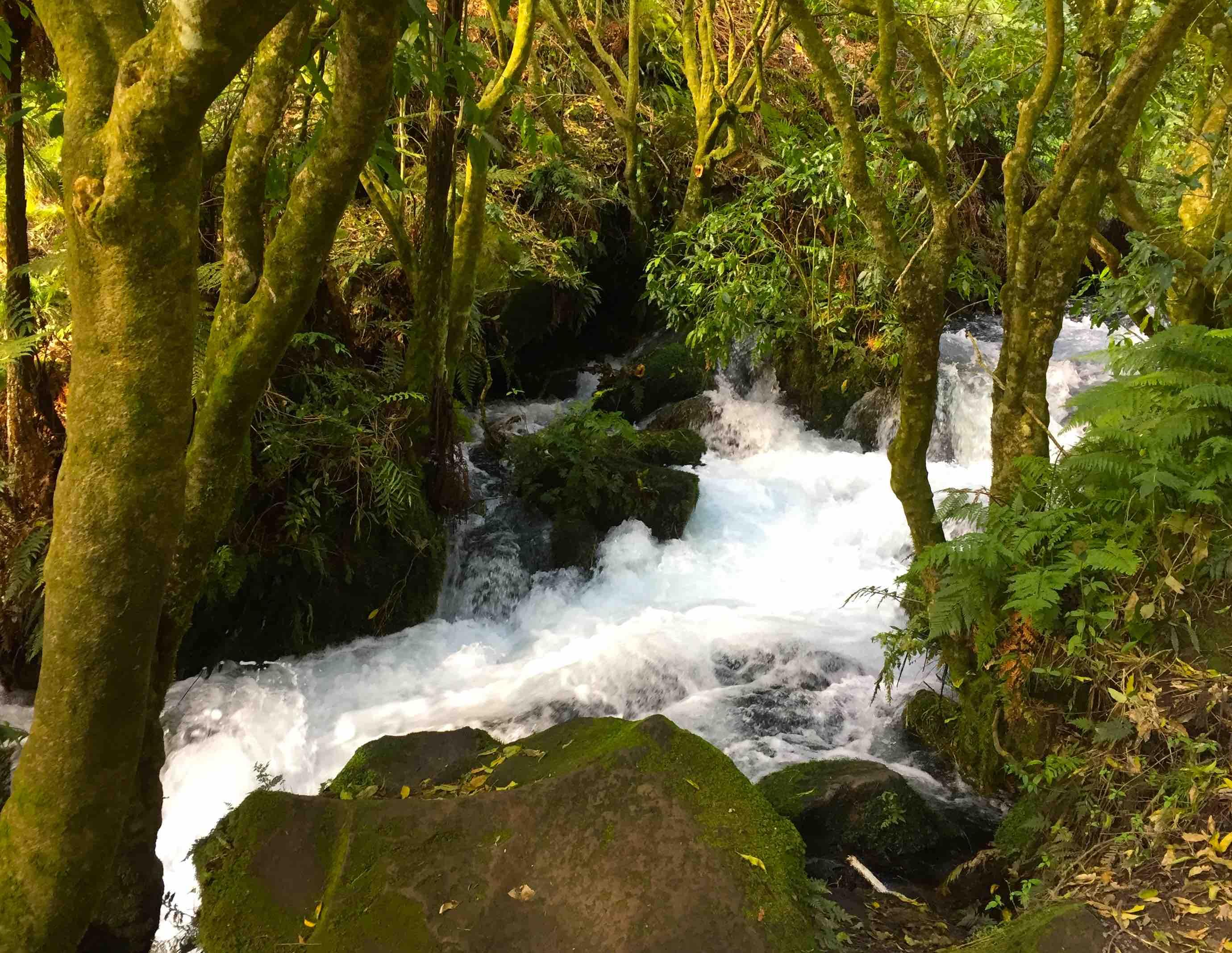 小さな滝が水しぶきを上がる